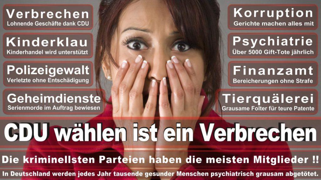 Wahlplakate-2017-CDU (98)
