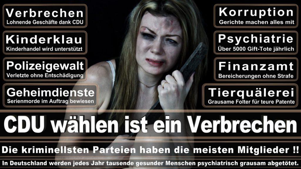Wahlplakate-2017-CDU (99)